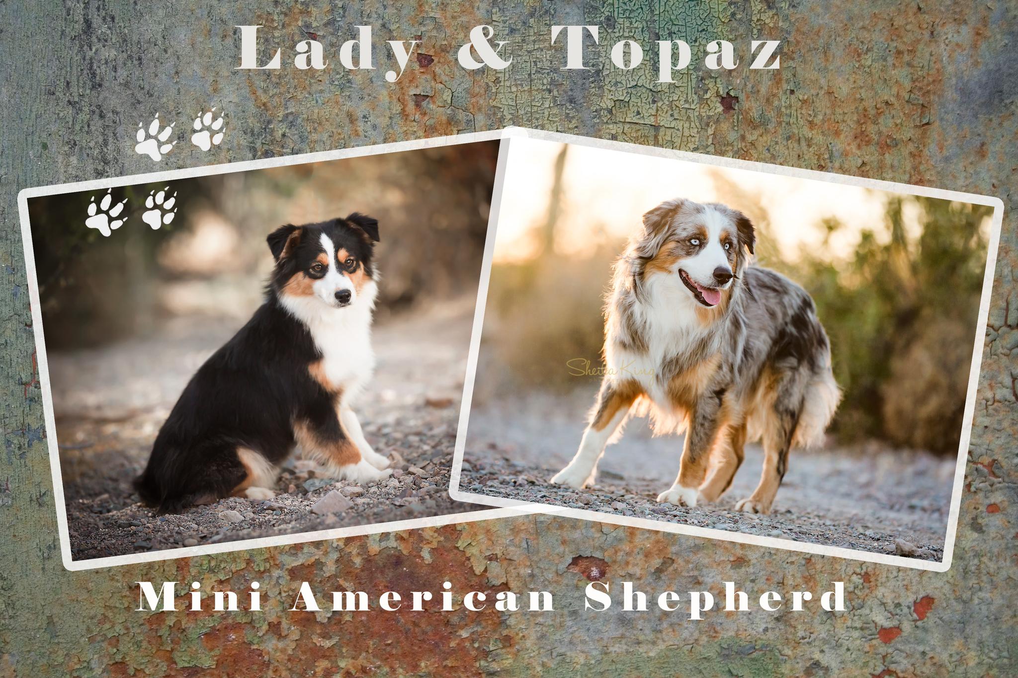 Lady&Topaz